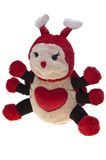 Insect stuffed toy, isolated Royalty Free Stock Photography