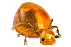 Insect van amber stock foto