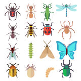 Insect vector flat icons set Stock Photos