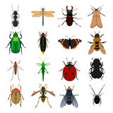 Insect vector set Royalty Free Stock Image