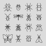 Insect vector thin line icons set Stock Photos