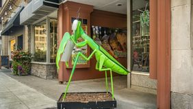 Insectarium d'Ottawa image stock