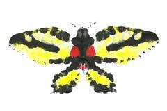 Insecte acrylique illustration stock