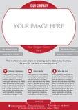 Insecte d'affaires Photographie stock libre de droits