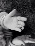 Insecte de Madame sur le doigt Images libres de droits