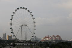 Insecte de Singapour - Ferris Wheel le plus grand du monde Photographie stock libre de droits