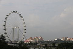 Insecte de Singapour - Ferris Wheel le plus grand du monde Photo stock