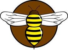 Insecte de vol d'abeille Photographie stock libre de droits