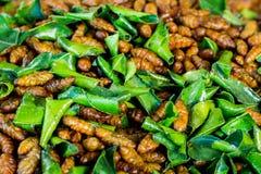 Insecte frit avec la feuille de chaux de kaffir photo stock