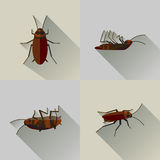 Insecte réglé de long cancrelat mort d'ombre de vecteur photographie stock libre de droits