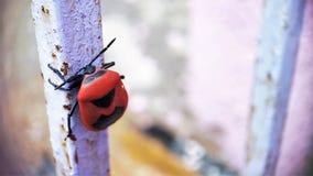 Insecte rouge de soldat se reposant sur une vue de face de visage de tige de fer photo stock