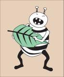 Insecte tenant et mangeant la feuille verte Photo stock