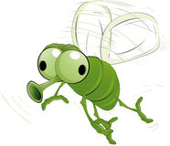 Insecte vert Images stock