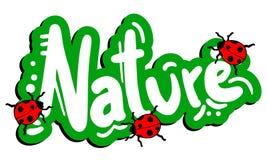 Insecte vert de nature Images stock