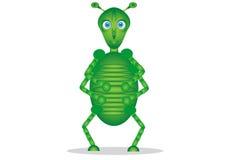 Insecte vert mignon Image libre de droits