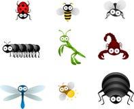 Insecten Stock Foto's