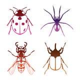 Insectenvector Royalty-vrije Stock Afbeelding