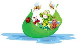 insectes illustration de vecteur