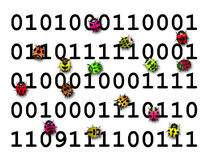 Insectes colorés fonctionnant au-dessus du code numérique Photo stock