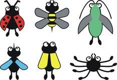 Insectes de couleur Photos libres de droits
