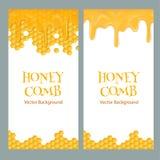 Insectes de miel avec le texte Photos libres de droits