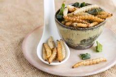 Insectes de nourriture : L'insecte en bambou de Caterpillar de ver en bambou a fait frire croustillant pour manger comme produits photo stock