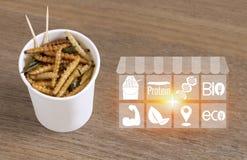 Insectes en bambou de Caterpillar pour manger comme nourriture avec la nutrition de médias d'icônes Casse-croûte frit de ver en b illustration stock