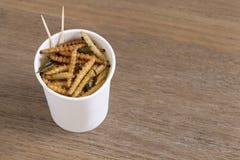 Insectes en bambou de Caterpillar pour manger comme nourriture Casse-croûte croustillant frit de ver dans la tasse jetable pour l photos libres de droits
