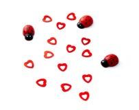 Insectes et coeurs de Madame pour le jour de valentines Images libres de droits