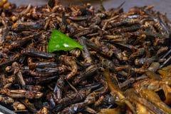 Insectes frits dans le plateau sur le compteur du marché chinois photo stock