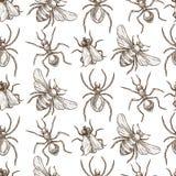 Insectes qui mouche et modèle sans couture de croquis monochromes de sépia de fluage illustration stock