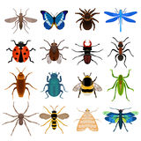Insectes réglés illustration libre de droits