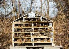 Insecthotel in het hout Stock Foto