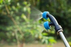 Insecticide de prière pour l'usine dans le jardin photos libres de droits