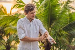 Insectifuge de pulv?risation de moustique de jeune homme dans le forrest, protection d'insecte photo libre de droits