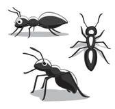Insecto Ant Cartoon Vector Illustration Imagen de archivo libre de regalías