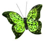 Insecto hermoso de la mariposa del verde de la primavera Foto de archivo