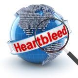 Insecto de Heartbleed con el globo digital y magnificar Imagenes de archivo