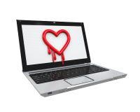 Insecto de Heartbleed en ordenador portátil Foto de archivo libre de regalías