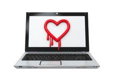 Insecto de Heartbleed en ordenador portátil Foto de archivo
