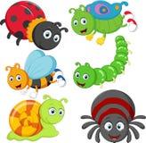 Insecto de la historieta Imagen de archivo libre de regalías