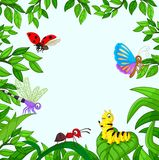 Insecto de la historieta en el jardín Fotografía de archivo libre de regalías