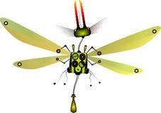 Insecto de la robusteza Fotografía de archivo