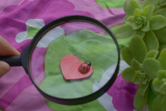 Insecto de la señora en corazón Imagen de archivo libre de regalías