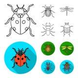 Insecto, insecto, escarabajo, pata Los insectos fijaron iconos de la colección en el esquema, web plano del ejemplo de la acción  stock de ilustración