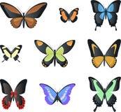 Insecto invertebrado del artrópodo de la mariposa de Morpho de la malaquita del vuelo Fotografía de archivo