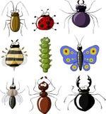 Insectos Fotos de archivo