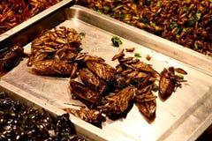 Insectos asados servidos en el mercado de Bangkok Imagenes de archivo