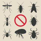 Insectos de la silueta fijados Imagenes de archivo
