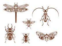 Insectos en estilo ornamental tribal libre illustration